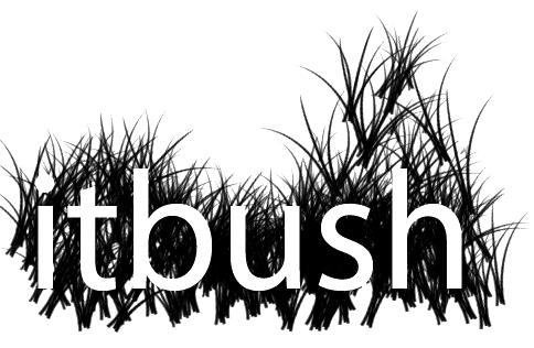 itbush.com